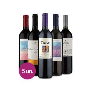 Kit 5 Vinhos Especiais - Wine