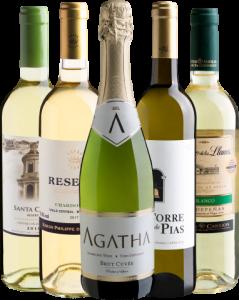 Kit Vinhos com 5 Garrafas