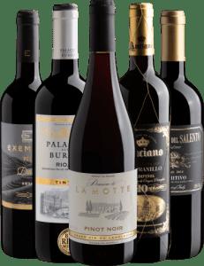 Kit 5 Vinhos Clássicos do Vinho
